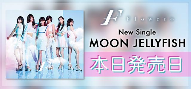 MOON JELLYFISH 本日発売日